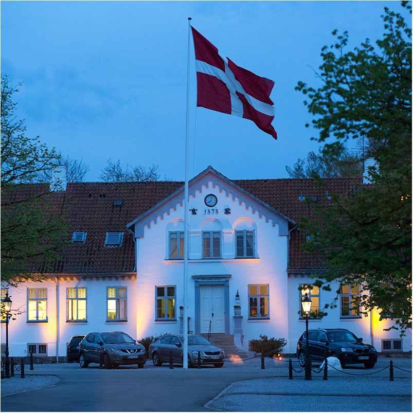 fest billeder i Odense